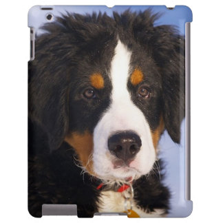 Bernese Mountain Dog Pup iPad case