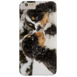 Bernese Mountain Dog Puppets Sniff Each Other Barely There iPhone 6 Plus Case