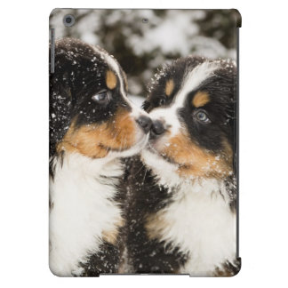 Bernese Mountain Dog Puppets Sniff Each Other Case For iPad Air