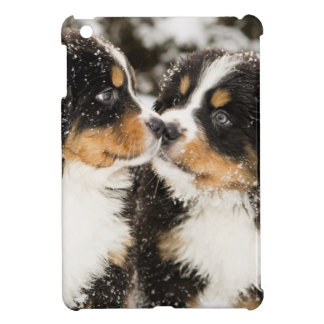 Bernese Mountain Dog Puppets Sniff Each Other Case For The iPad Mini