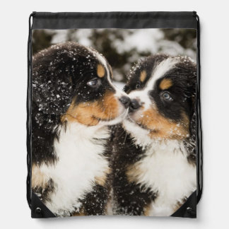 Bernese Mountain Dog Puppets Sniff Each Other Drawstring Bag
