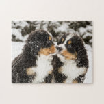 "Bernese Mountain Dog Puppets Sniff Each Other Jigsaw Puzzle<br><div class=""desc"">Snowy bernese mountain dog puppets sniff each others</div>"