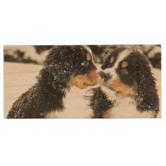 Bernese Mountain Dog Puppets Sniff Each Other Wood USB 2.0 Flash Drive