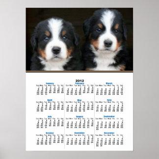 Bernese mountain dog puppies 2012 calendar poster