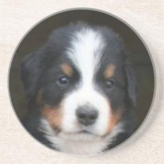 Bernese Mountain dog puppy coaster