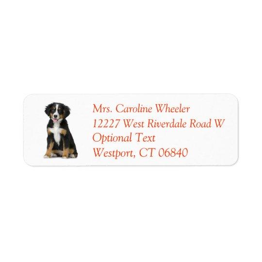 Bernese Mountain Dog Puppy Dog Return Address Label