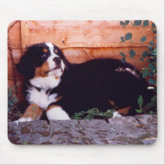 bernese mountain dog puppy mousemat mouse pad