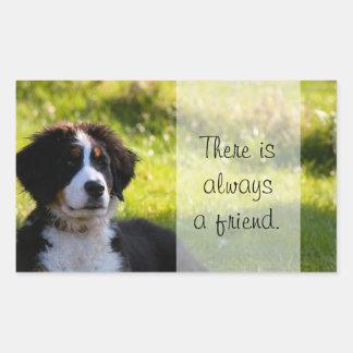 Bernese mountain dog puppy on green grass rectangular sticker