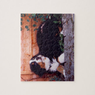 bernese mountain dog puppy puzzle