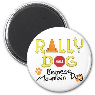 Bernese Mountain Dog Rally Dog Magnet
