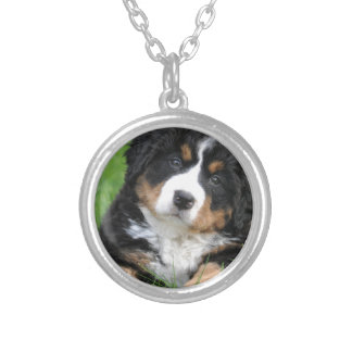 Bernese Mountain Dog Silver Plated Necklace