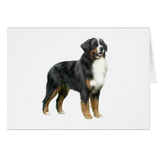 Bernese Mountain Dog - standing Card