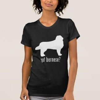 Bernese Mountain Dog Tee Shirts