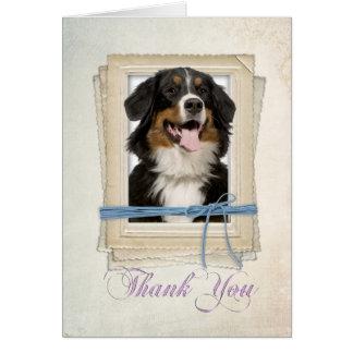 Bernese Mountain Dog Thank You Card
