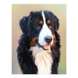 """Bernese mountain dog, the obedient dog 8.5"""" x 11"""" flyer"""
