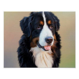 Bernese mountain dog, the obedient dog poster