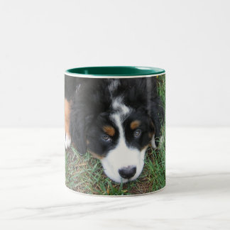 Bernese Mountain Dog Two-Tone Coffee Mug
