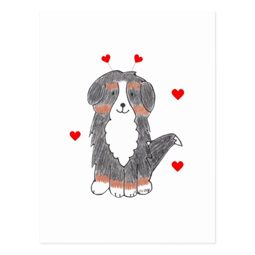 Bernese Mountain Dog Valentine Ears Postcard