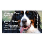 Bernese Mountain Dog with Big Tongue Business Card