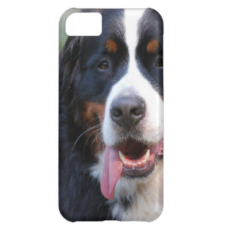 Bernese Mountain Dog with Big Tongue iPhone 5C Cover