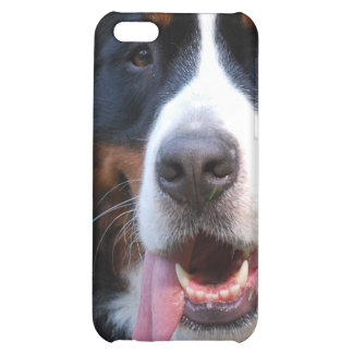 Bernese Mountain Dog with Big Tongue iPhone 4 Case