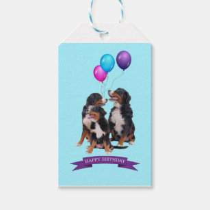 Bernese Mountain Dogs Happy Birthday Gift Tag
