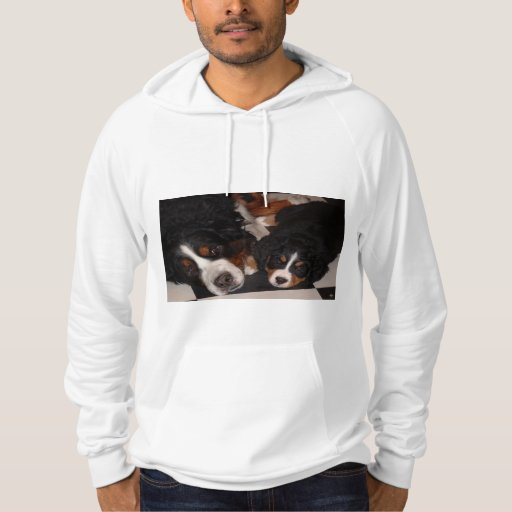 Bernese Mountain Dogs Head to Head Men's Hoodie