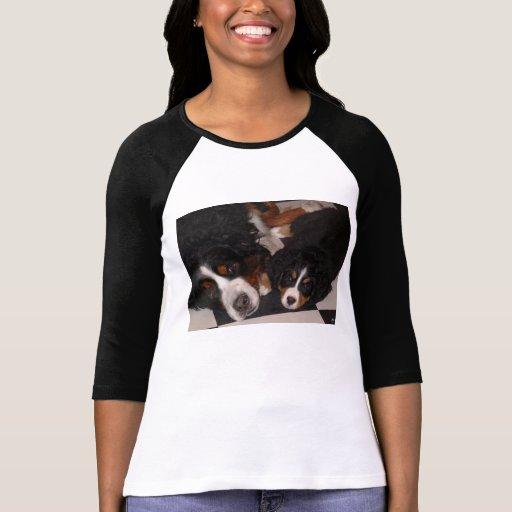 Bernese Mountain Dogs Head to Head T_Shirts T Shirt