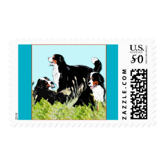 Bernese Mountain Dogs Postage Stamps