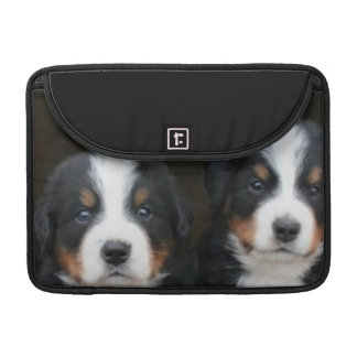 Bernese mountain dogs Rickshaw Sleeves For MacBook Pro
