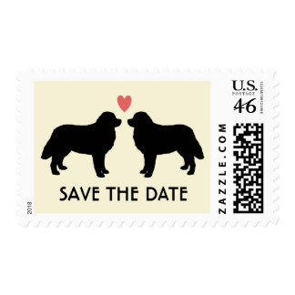 Bernese Mountain Dogs Wedding Save the Date Postage Stamps