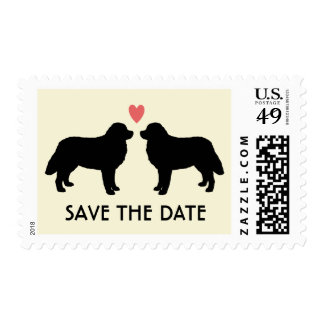 Bernese Mountain Dogs Wedding Save the Date Stamp