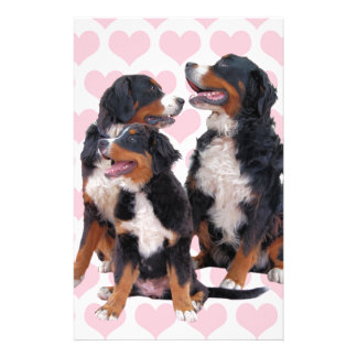 Bernese Mountain Dogs with Pink Hearts Stationery