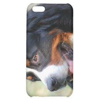 Bernese Mountain Puppy iPhone 4 Case