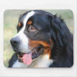 Bernese Mountain Puppy Mouse Pad