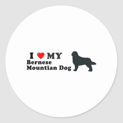 Bernese Mountian Dog Classic Round Sticker