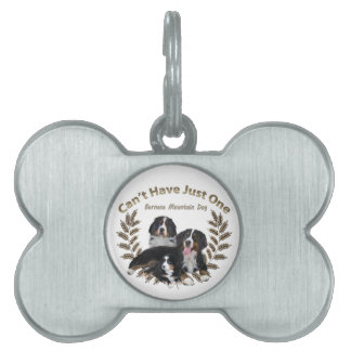 Bernese Mt. Dog Can't Have Just One Pet ID Tag