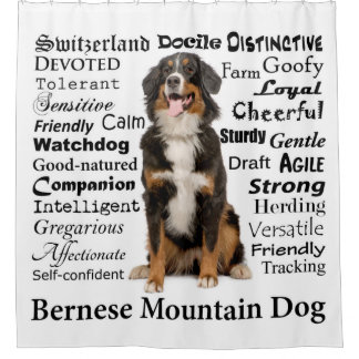 Bernese Mt. Dog Traits Shower Curtain