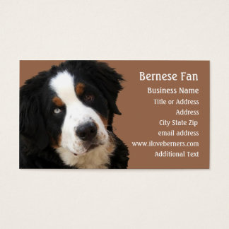 """Bernese Mtn Dog Business Card - """"Lucy"""""""