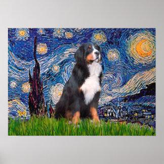 Bernese - noche estrellada póster