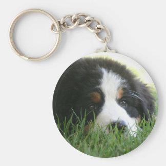 Bernese Puppy Keychain