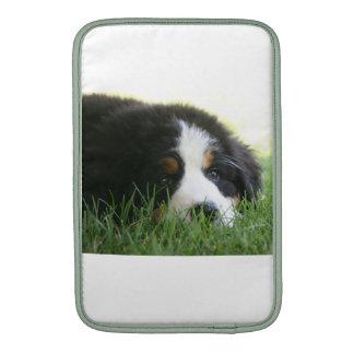Bernese Puppy MacBook Air Sleeves