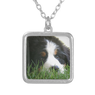 Bernese Puppy Silver Plated Necklace