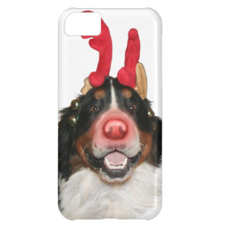 Bernese Roodolph (Rudolph) Cover For iPhone 5C
