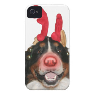 Bernese Roodolph (Rudolph) iPhone 4 Case