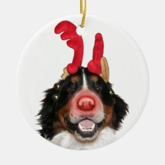 Bernese Roodolph (Rudolph) Christmas Ornament