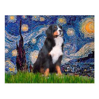 Bernese - Starry Night Postcard
