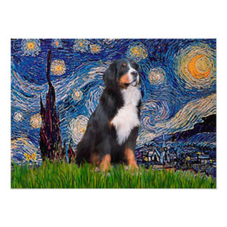 Bernese - Starry Night Poster