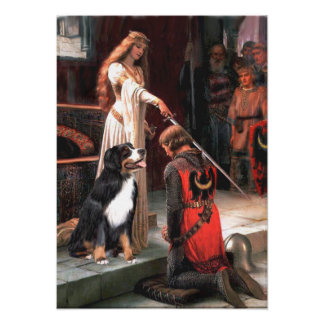 Bernese - The Accolade Poster