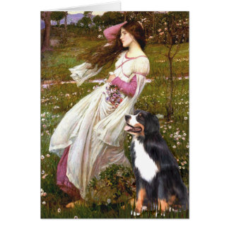 Bernese - WIndflowers Card